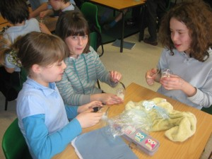 Making ice-cream in the classroom