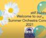 Orchestra Summer Sunset Concert
